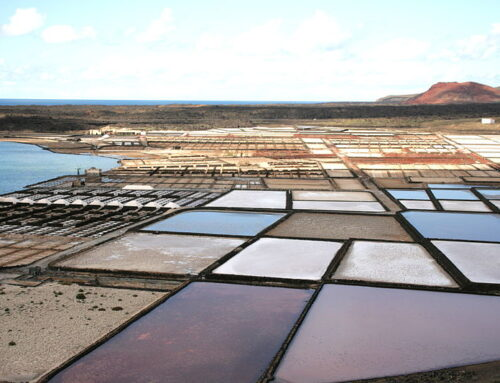 Discover the Janubio salt flats