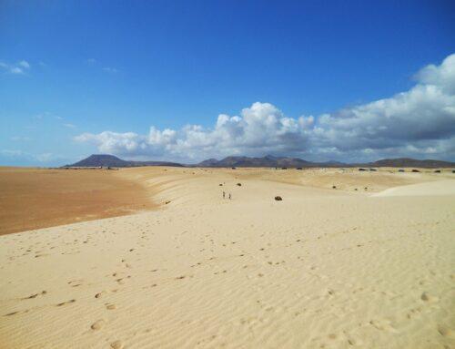 Discover Fuerteventura from Lanzarote