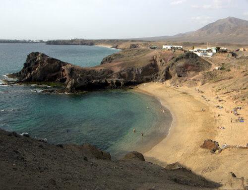 Discover Playa Papagayo