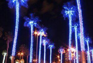 Gran Canaria at Christmas